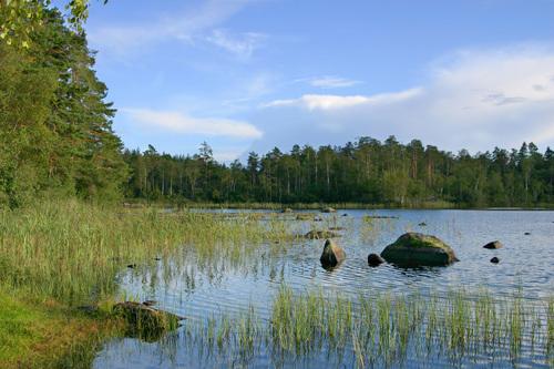 Allt fler flyttar till Eskilstuna Kommun